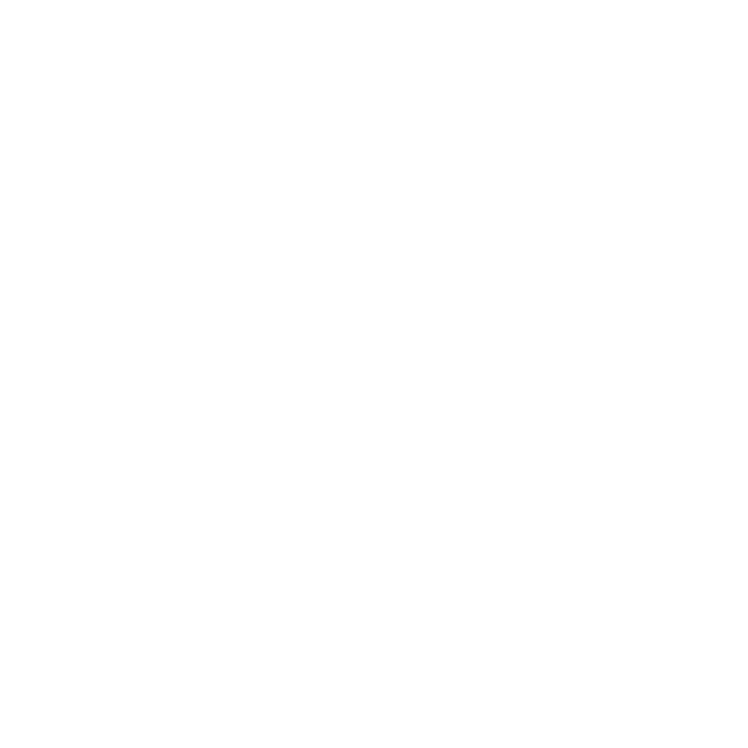 IVR_Icon_white.png