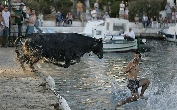 Charging Bull (Source: Eat, pray & blog)
